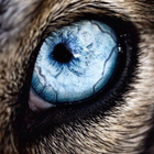 avatar for hellvin