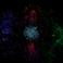 avatar for Vodopwn