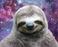 avatar for Alexandra5123