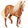avatar for Nicky52140