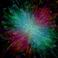 avatar for Nolancasuga