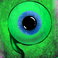 avatar for simonhoho