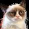 avatar for zLordKillerz