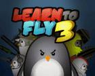 avatar for PenguinCantFly