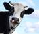 avatar for ColtonW49